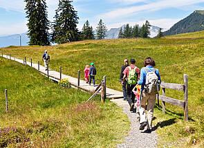 Bei gutem Wetter wandert eine Gruppe einen schmalen Pfad entlang eines Berghangs. In der Ferne ist – hinter einer Gruppe von Bäumen – eine Bergkette zu erkennen.
